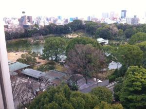 中村の空中図書館『コリドール』から見た清澄庭園。