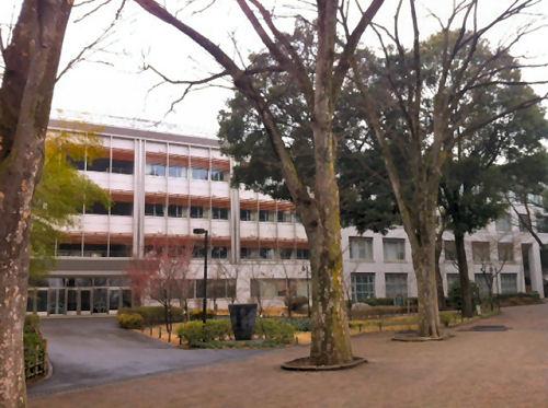 武蔵野の豊かな自然に囲まれた成蹊中高のキャンパス